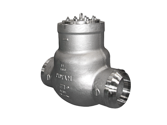 08-cryogenic-pressure-seal-bonnet-swing-check-valve